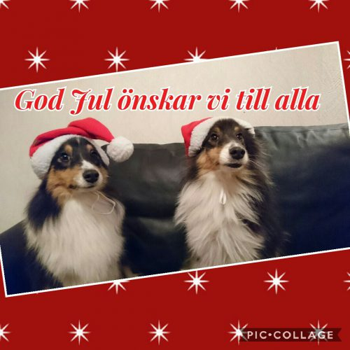 God Jul ? ??